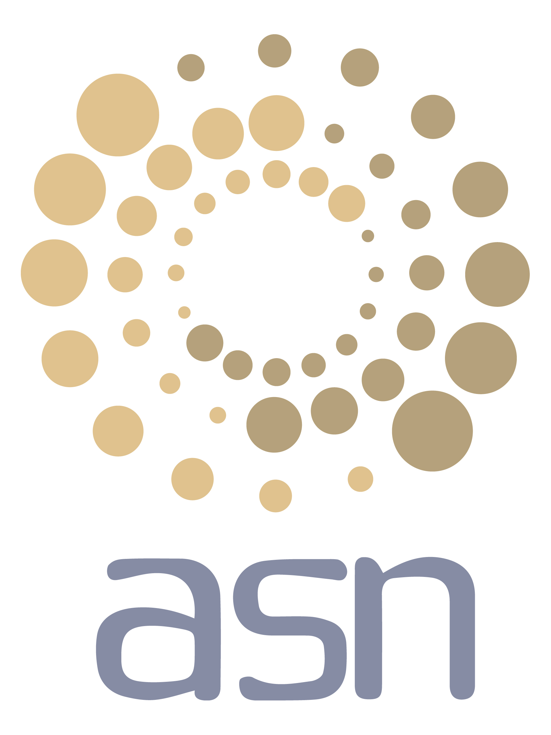 ASN Business Solutions